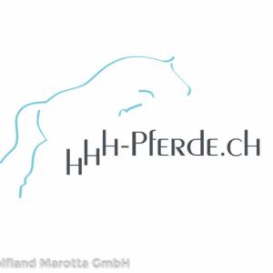 grafic logo